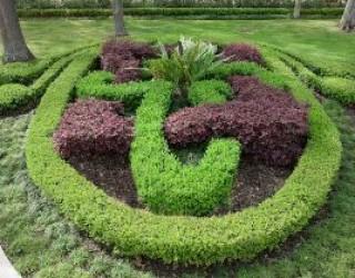 Mediterranean Garden Design & Installation Case History