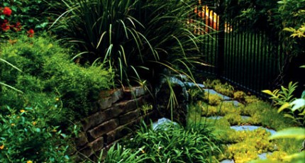 Landscape Maintenance Professionals