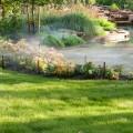 Lawn Landscape Maintenance for Houston