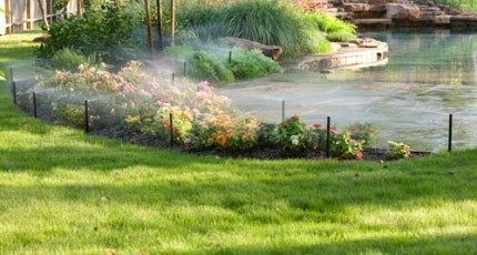 Low-Maintenance Landscape