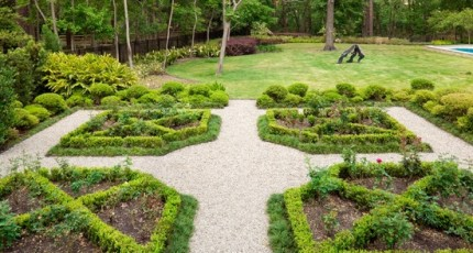 How Boxwood Shrubs can be used to Build Custom Gardens
