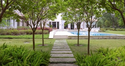 Shade Gardens Need Constant Tree Pruning