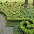 Lawn Service: Best Practices and Smart Practices