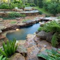 Growing Moss for Houston Landscaping Projects